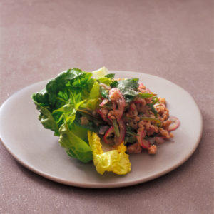 Neil Perry's Balance and Harmony recipe: Warm salad of spicy minced chicken.